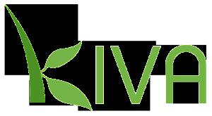 Kiva - Microfinance